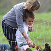 Anthony Peruffo, 4, of Salem, feeds the chickens with help from his grandmother Adele Peruffo, at Meet the Animals Day held at Green Meadows Farm on Saturday afternoon. DAVID LE/Staff photo. 5/10/14