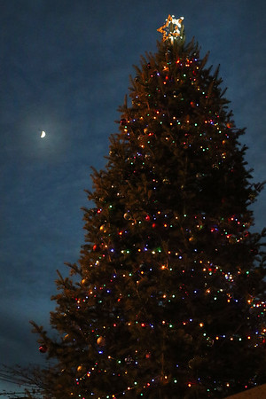 HADLEY GREEN/Staff photo<br /> A giant tree was lit up next to city hall during the annual Peabody Holiday Stroll. <br /> <br /> 11/25/17