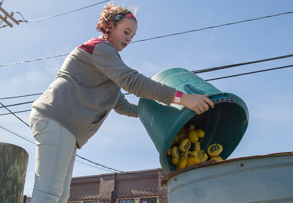 PARKER FISH/ Photo. Michaela Bartlett of Danvers pours the last bucket of rubber ducks into the holding cylinder just before the annual duck race. 9/17/16