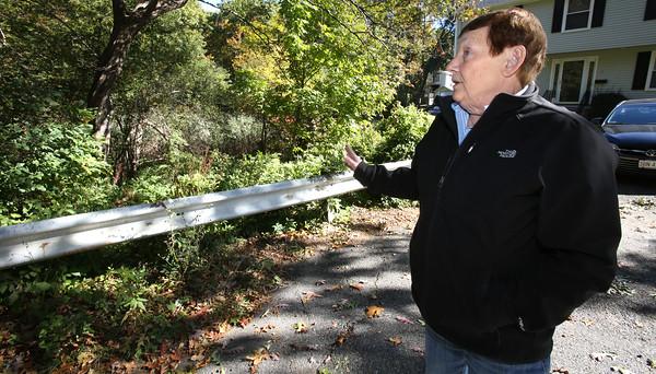 Former Ward 1 Councilor Maureen Troubetaris lives in the neighborhood near Folly Hill