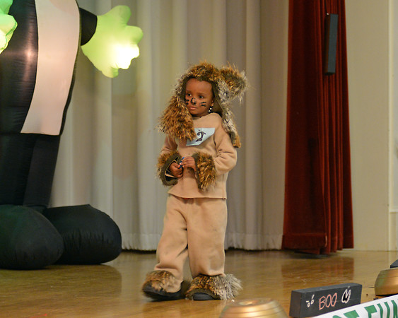 RYAN HUTTON/ Staff photo<br /> Cayden Neat, 4, makes his way across the stage dressed as a lion during the costume contest at the Peabody Halloween celebration at the Knights of Columbus hall on Thursday.