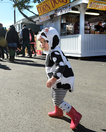CARL RUSSO/Staff photo. SALEM NEWS: After a rainy Sunday, thousands of people came out to enjoyed themselves on the last day of the 198th. Topsfield Fair. America's oldest fair. Charlotte Hanchett, 18 months old of Beverly wears her baby cow outfit. 10/10/2016