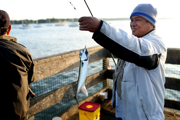 HADLEY GREEN/Staff photo<br /> Nick Sison catches a mackerel off the pier at the Willows. Sison has been coming to the Willows for twelve years, and likes to fish as a hobby.<br /> <br /> 08/31/17