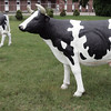 Fake cows next to the Kaminiski auction house to be sold