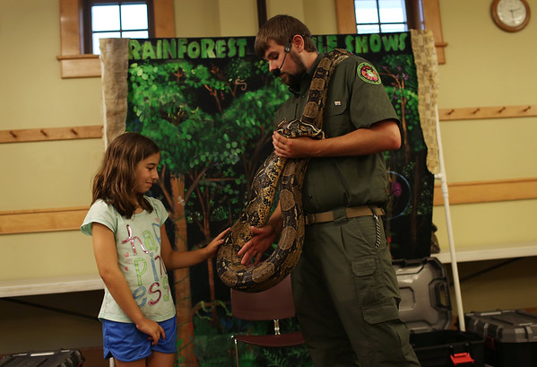 HADLEY GREEN/Staff photo<br /> Ollie Marshall, 9, of Danvers, touches a boa constrictor at the Rainforest Reptiles show at the Flint Library in Middleton. 8/15/17
