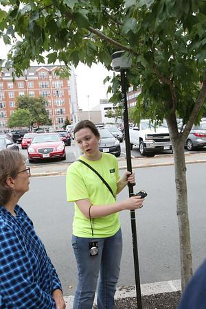 Testing methane levels near trees