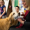 Jared Charney / Photo 2nd Grade teacher Elisa LaSota's therapy dog Patrick delivers a hand made snowman at Horace Mann Elementary School, Thursday, December 8, 2016.