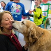 Jared Charney / Photo 2nd Grade teacher Elisa LaSota gets a kiss from her therapy dog Patrick at Horace Mann Elementary School, Thursday, December 8, 2016.