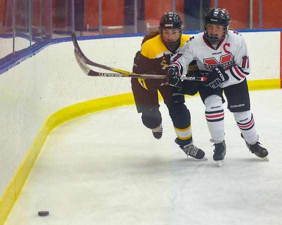 Bishop Fenwick vs Marblehead girls hockey