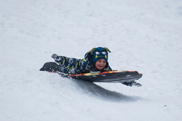SAM GORESH/Staff photo. Aaron Giacchino, 6, sleds down the hill at Lyons Park. 2/12/17