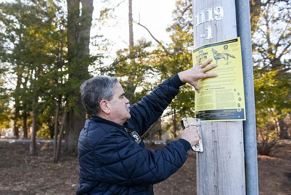 Coyote Warning in Salem