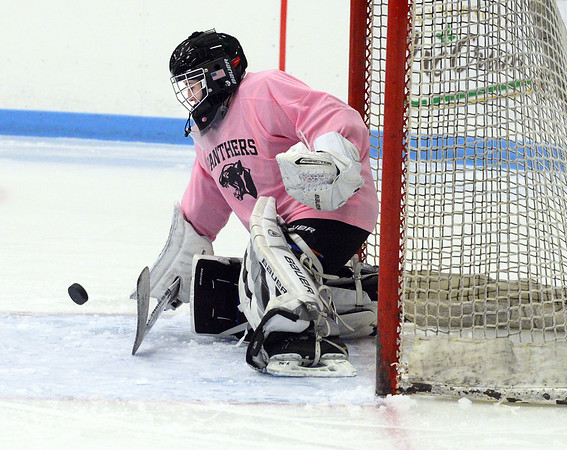 CARL RUSSO/Staff photo. Beverly/Danvers sophomore goalie, Julia Otterbein makes a save. <br /> <br /> The annual Colleen Ritzer memorial hockey game between Andover high and Beverly/Danvers was played on January 9, Wednesday night at the Raymond Bourque arena at Endicott College. The game benefits the Colleen Ritzer Memorial Scholarship Fund. <br /> <br /> Colleen Ritzer of Andover, a Danvers high school teacher was murdered in 2013 by her student. 1/9/2019