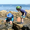 HADLEY GREEN/Staff photo<br /> From left, David Robinson and Andy Kivlan, both of Gloucester, search for crabs at Lynch Park in Beverly.<br /> <br /> 07/12/2018