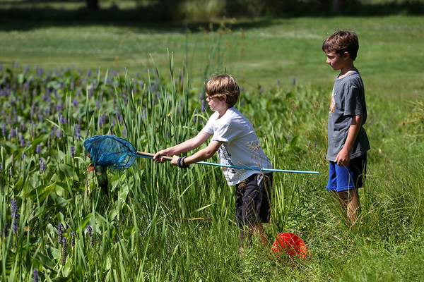 HADLEY GREEN/Staff photo<br /> Seth Glidden and Liam O'Connor search for frogs on Monday afternoon at Patton Park in Hamilton. <br /> 07/23/2018