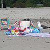HADLEY GREEN/Staff photo<br /> A seagull lurks next to beach bags at Devereaux Beach in Marblehead. <br /> <br /> 07/31/2018