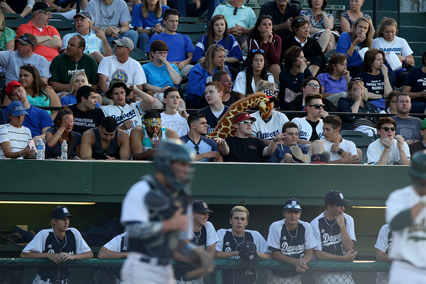 DAVID LE/Staff photo.Fans during the Falcons' Div. 2 State Final game against Dighton-Rehobeth at Fraser Field in Lynn.