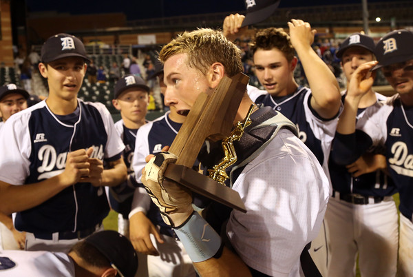 DAVID LE/Staff photo. Danvers junior Matt Andreas takes a bite out of the D2 North trophy following the Falcons 9-4 win over Reading. 6/11/16.