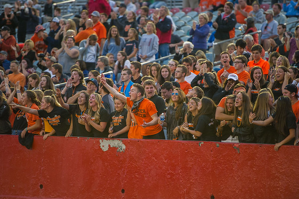 Ipswich fans react to a goal during the division 3 boys lacrosse championship game.