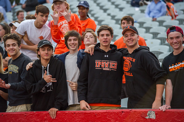 Ipswich fans cheer in the stands during the division 3 boys lacrosse championship game.
