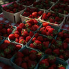 Staff photo/ HADLEY GREEN<br /> Sandy Hill Farm in Eliot, Maine sells strawberries at Peabody's Pop Up Market on the Leather City Common. <br /> <br /> 06/12/2018