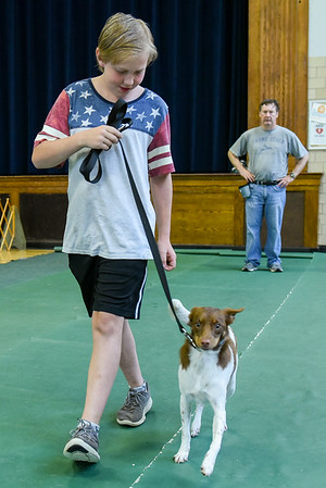 The Old Colony Obedience School is celebrating its 70th anniversary this year