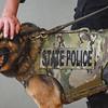 Essex Park residents donate K-9 dog vest