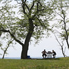 KEN YUSZKUS/Staff photo.    Two people sit at a picnic bench over looking Dane Street Beach.     05/31/16