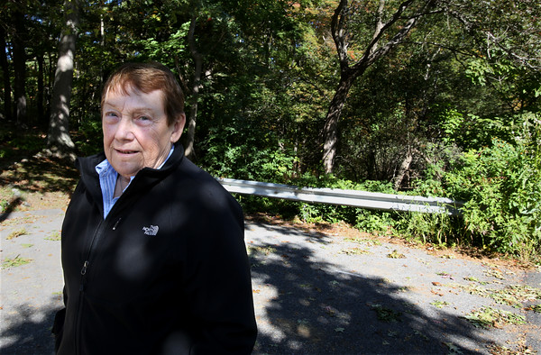 Former Ward 1 Councilor Maureen Troubetaris lives in the neighborhood near Folly Hill