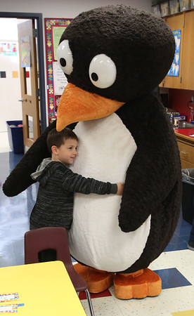 JiJi the Penguin