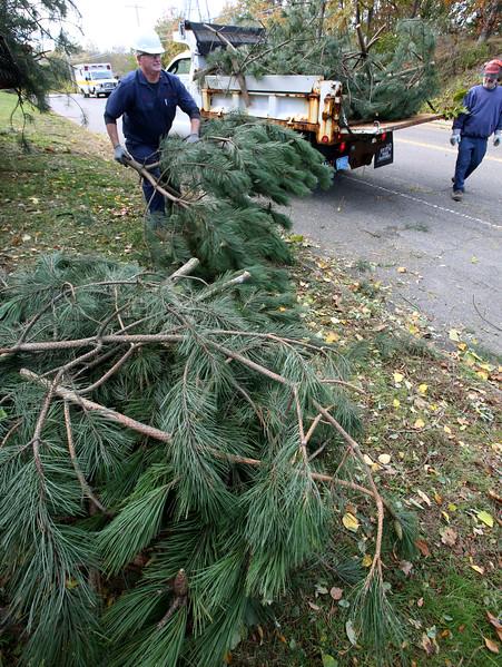 Trees down at Salem Willows