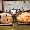 HADLEY GREEN/Staff photo<br /> Steve Sperry's 1,938 pound pumpkin, left, sits next to Woody Lancaster's 2,003.5 pound pumpkin, right, before they are weighed at the Giant Pumpkin Weigh-Off at the Topsfield Fair.<br /> 09/29/17