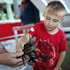 HADLEY GREEN/Staff photo<br /> Richard Marks, 4, of Beverly, holds a lobster onboard the Sea Shuttle, an educational marine life boat, at the Beverly Harbor Fest at Glover Wharf Marina.<br /> 09/09/17