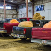 AMANDA SABGA/Staff photo <br /> <br /> Giant pumpkins sit in the beds of trucks during the Giant Pumpkin Weigh Off on the first night at Topsfield fair.<br /> <br /> 9/28/18