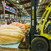 AMANDA SABGA/Staff photo <br /> <br /> The top ten pumpkins are lined up after being weighed during the Giant Pumpkin Weigh Off on the first night at Topsfield fair.<br /> <br /> 9/28/18