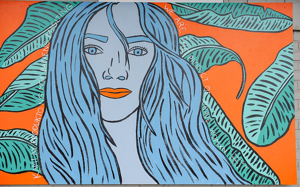 Peabody Fest Muralist Anna Dugan