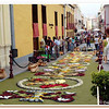 Flower carpets made the morning of the Corpus Christi celebrations in La Orotava in June.