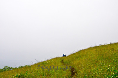 Spring Hike, Cascade Head, Oregon Coast