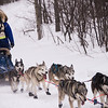 John Beargrease Dogsled Race