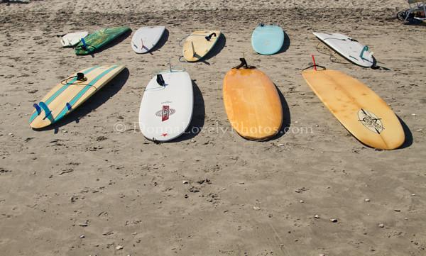 Surf boards 8-13©DonnaLovelyPhotos com  150dpi wtmk