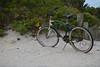 LBI Beach Bike, DonnaLovelyPhotos com-4526