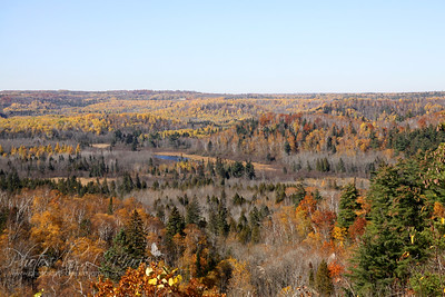 Duluth Fall Color