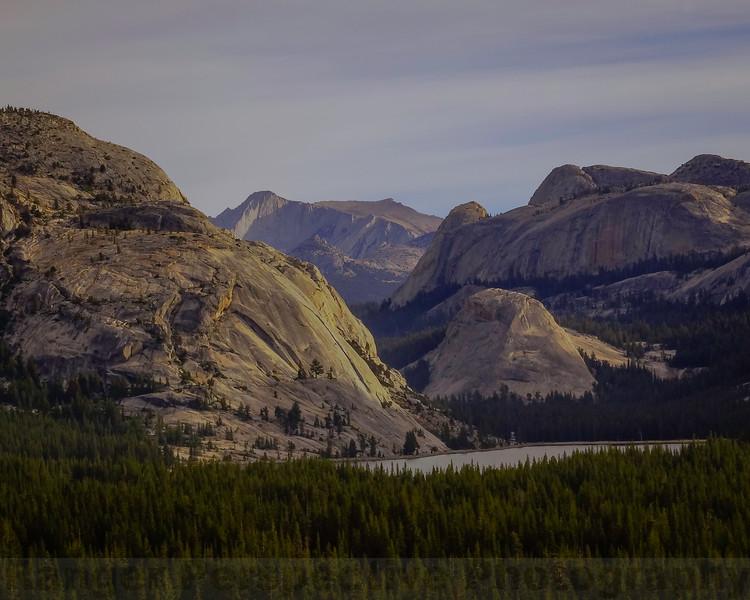 Tenaya Lake and Mount Conness