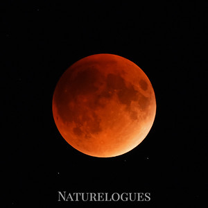 Total Lunar Eclipse 9-27-15
