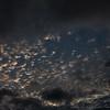2018-11-15_clouds_(amflux)---4