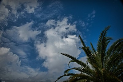 rx10_003_clouds