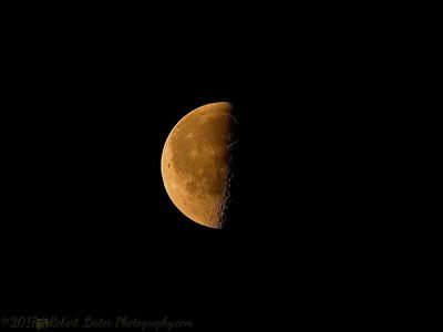 2017-05-18_P5180006_Half moon,clwtr,Fl