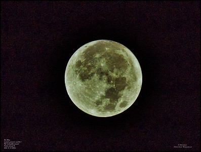 PA310013_moon iso 200
