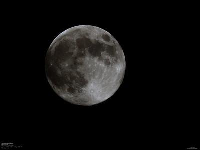 P5070004_full moon,flower moon2