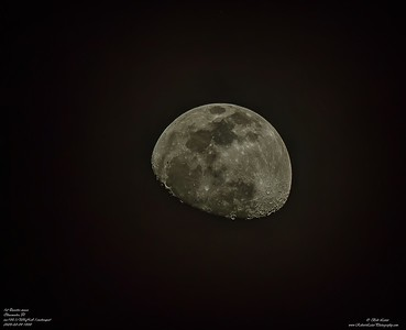 P2040004_ 1st Quarter moon