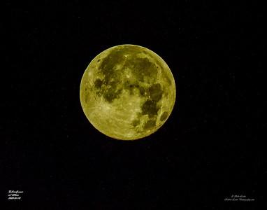 P1110047_full wolf moon